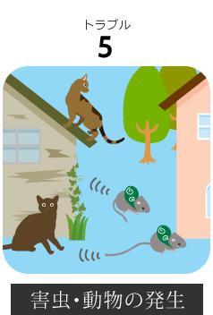 長野市内空き家の害虫・動物の発生
