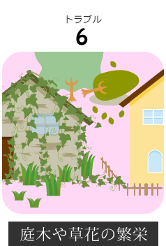 長野市内空き家の庭木や草花の繁栄